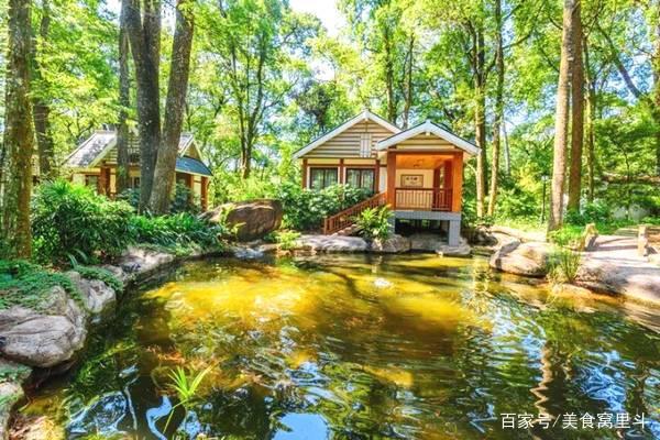 格氏栲森林公园,一个特别漂亮的风景区,推荐给你