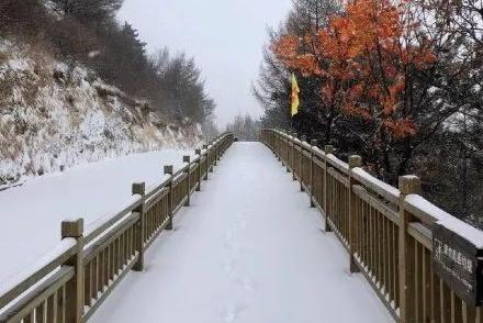 降雨降雪又降温,真的会一秒入冬吗?