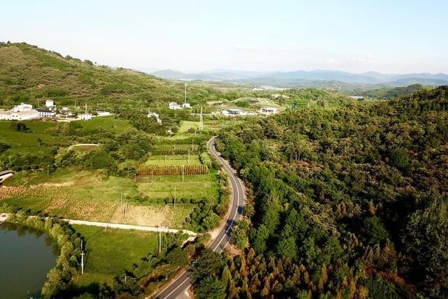 江苏有个最适合自驾的公路,被当地人称为彩虹公路,你去过吗