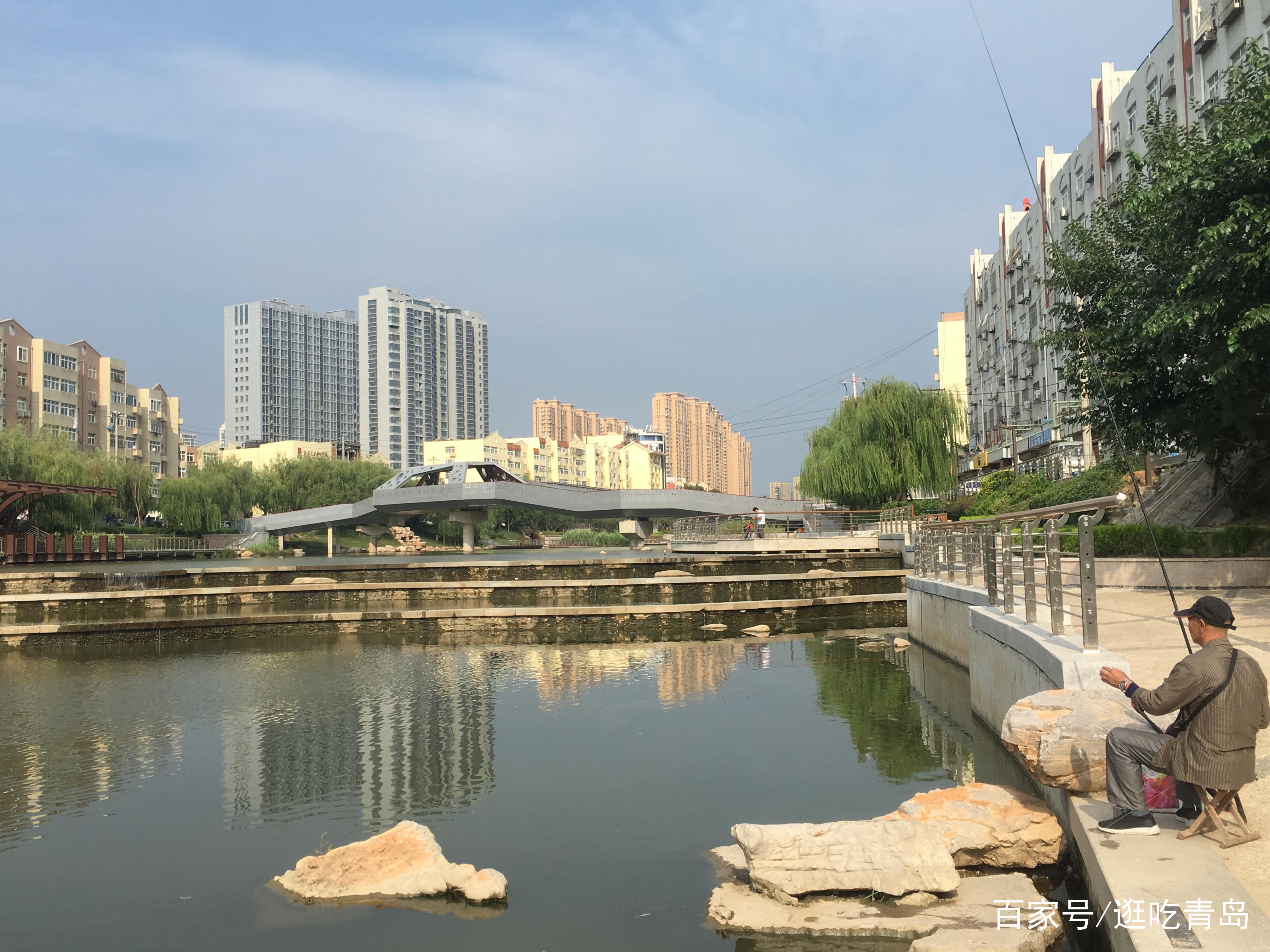 """青岛最大商圈""""藏""""着一条景观河,芦苇丛生鸟飞鱼跃如入"""