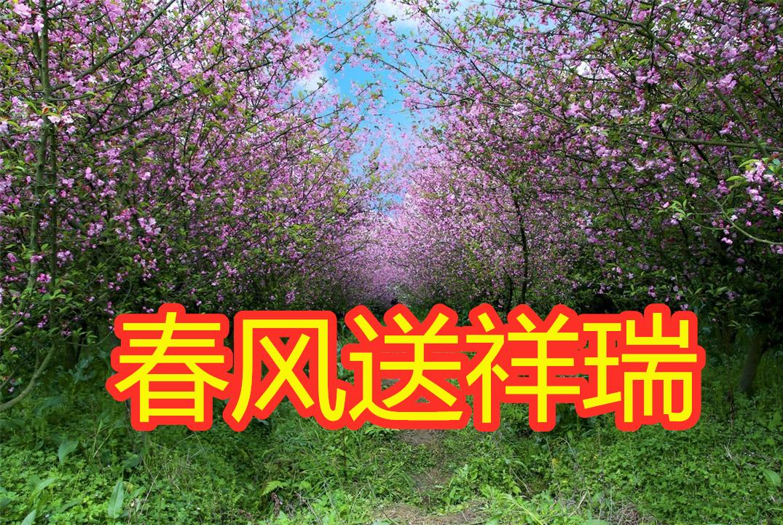 4月中旬春风送祥瑞,福禄双收,功成名就,爱情美满的4大星座