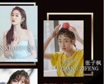 搜狐电影评年度烂片,冯绍峰、热巴获烂片帝后,网友质疑其权威性