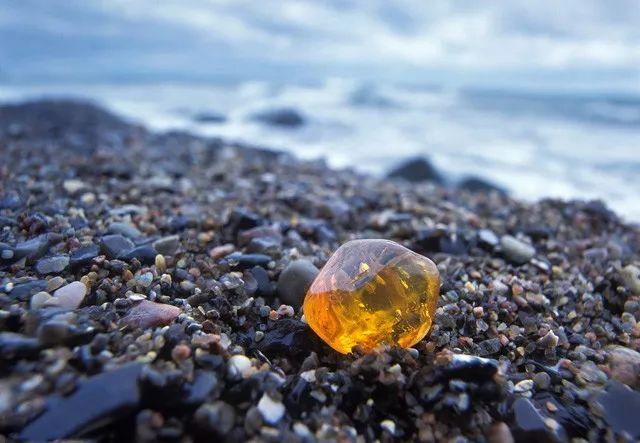 波罗的海沿岸-琥珀海漂料