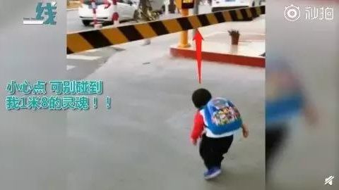 小孩车前玩耍,死里逃生:将来能救孩子的,只有他们自己!
