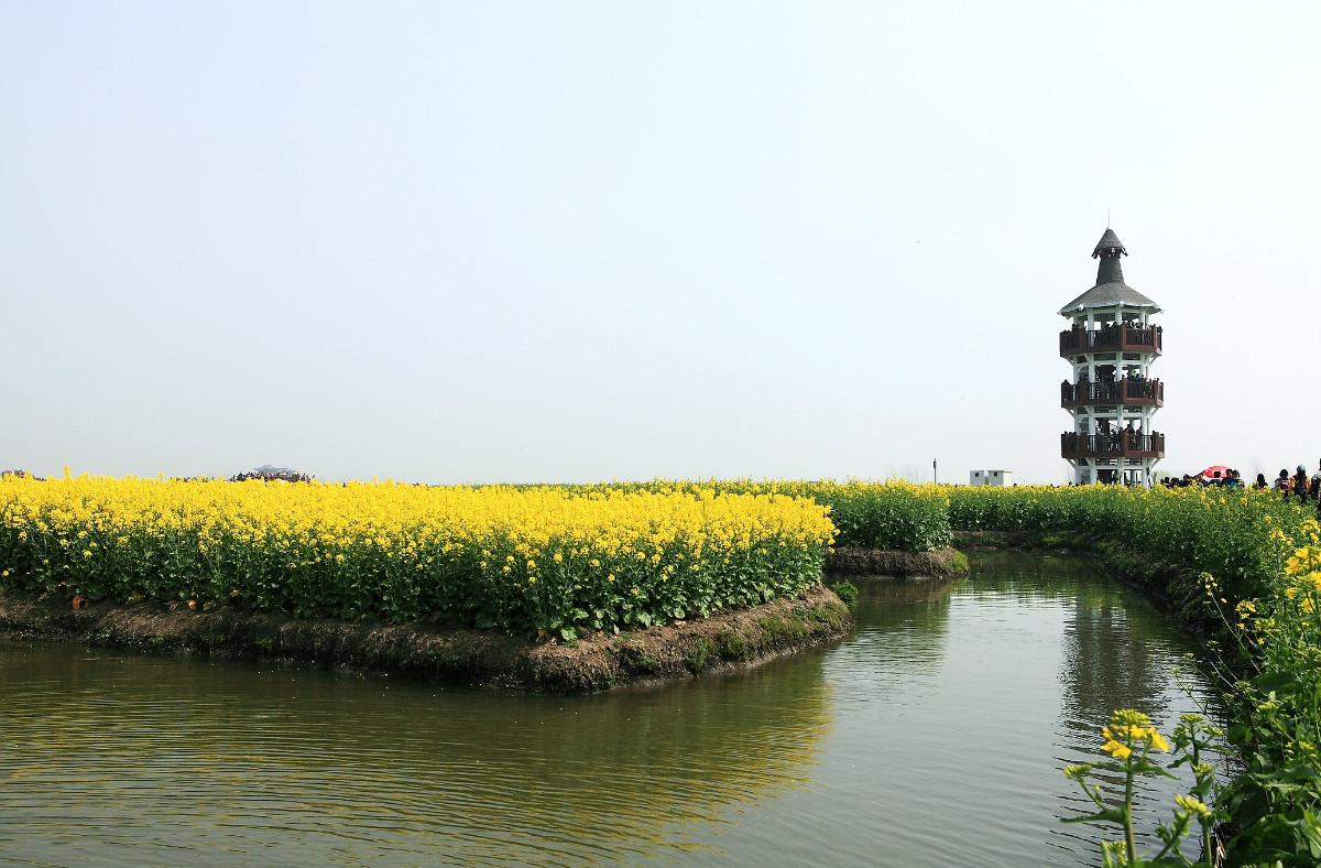 除了泰州千岛菜花风景区,孟买印度门以外,这些游客很多的旅游休闲场所