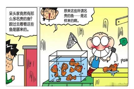 """搞笑漫画:呆头秘制""""可乐汤壶""""成发明家?一条10000元土豪鱼"""