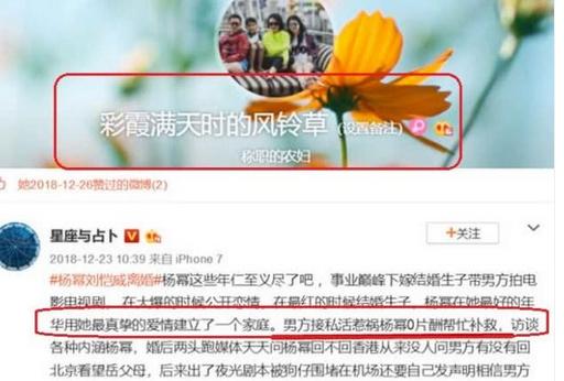 王中磊老婆点赞杨幂离婚事件,认同杨幂为了家庭十分不易