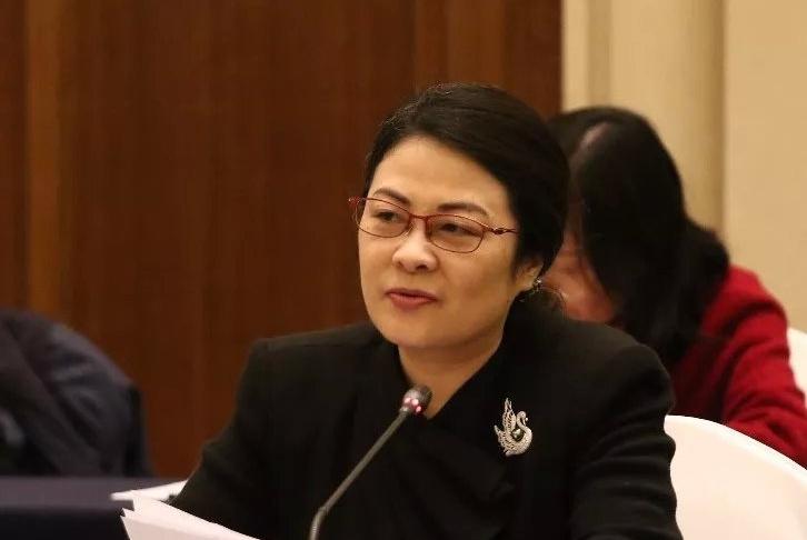 田宁建言全国人大常委会副委员长万鄂湘