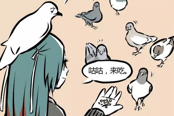 非人哉:精卫喂食其他鸟让海燕发怒,海燕很护食!
