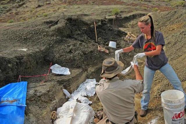 科学家发现6500万年前,小行星撞击地球的第一批受害者化石!