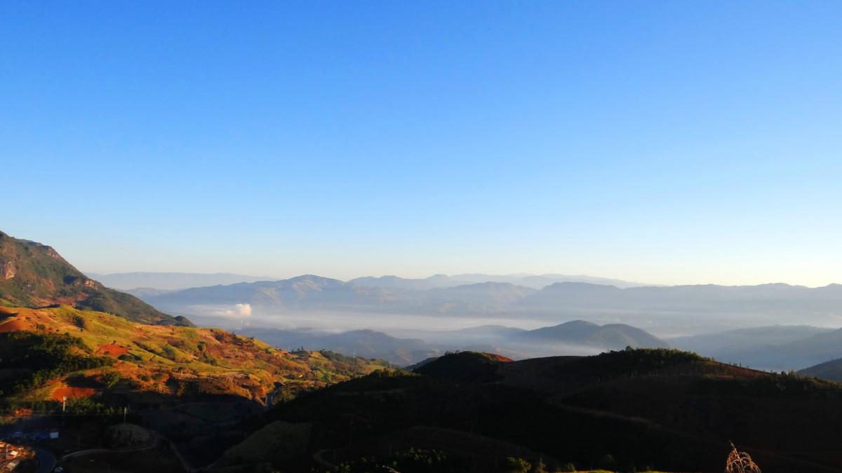 盘点空气湿润的森林公园,你去过贵阳森林公园,郑州图片