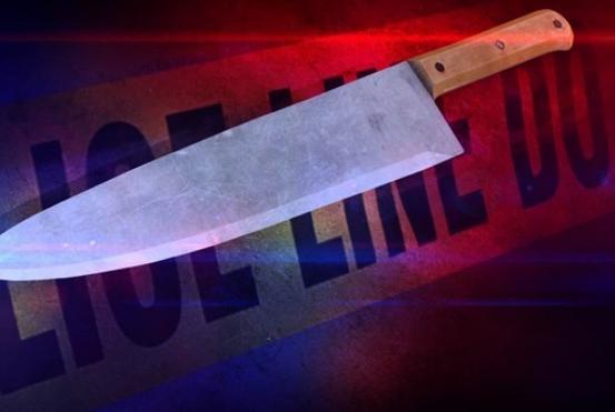 男子持刀自残,警方劝说无果后将其击毙