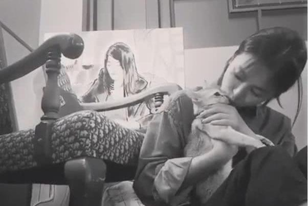 宋慧乔怀抱宠物猫咪热情献吻 喵星人却一脸不情愿
