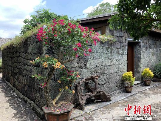 海南:未经批准不得新建民宿 严禁变相发展房地产