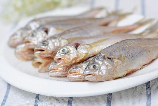 这3种鱼DHA含量高刺又少,最适合宝宝吃!