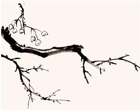 写意画作品《秋蝉老干图》创作步骤,很有意境!