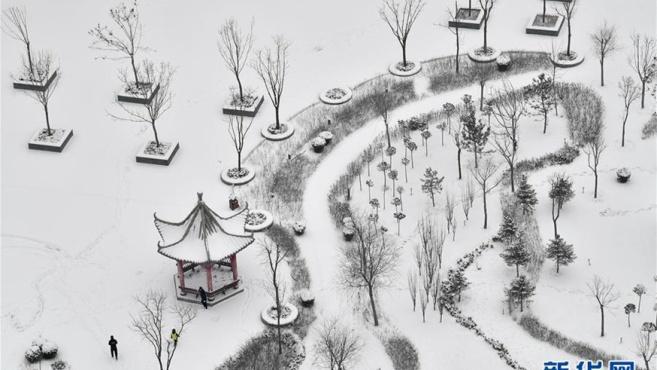 宁夏南部迎降雪