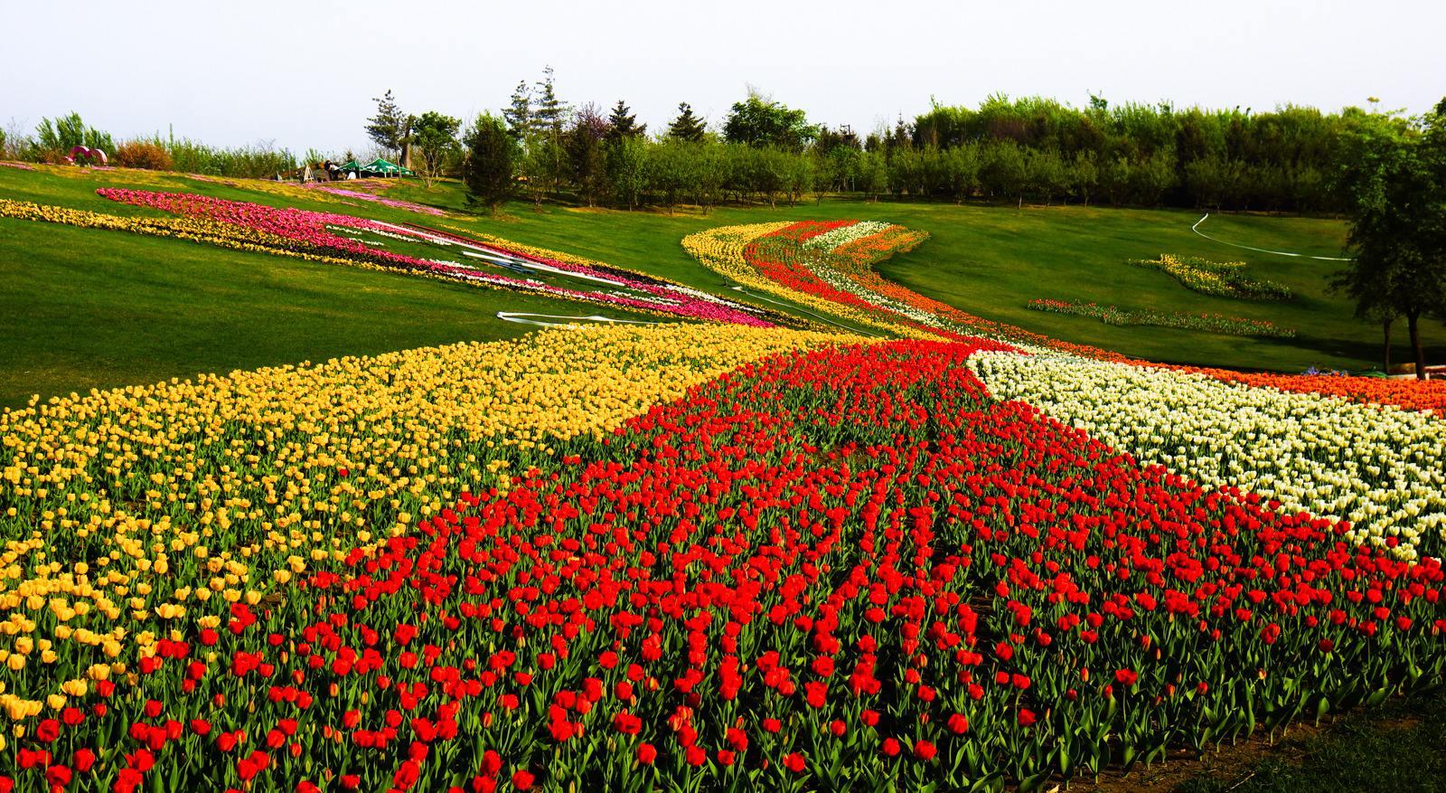 辽宁省有5个国家AAAAA级旅游景区风景很美,你知道几个?