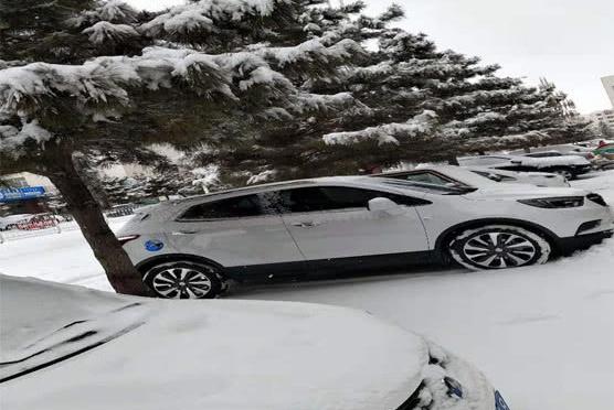 内蒙古:当惊蛰遇见雪