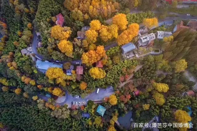 中国最美的100家民宿院子 看看你城市有几家(一) 推荐 第24张