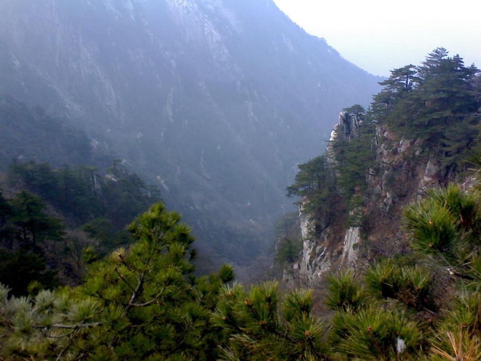 广州黄花岗公园,本溪动物园……细数那些空气非常好的