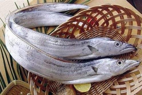 为何市场的带鱼都是冰冻的,怎么不见活带鱼?老渔民:活的吃不起