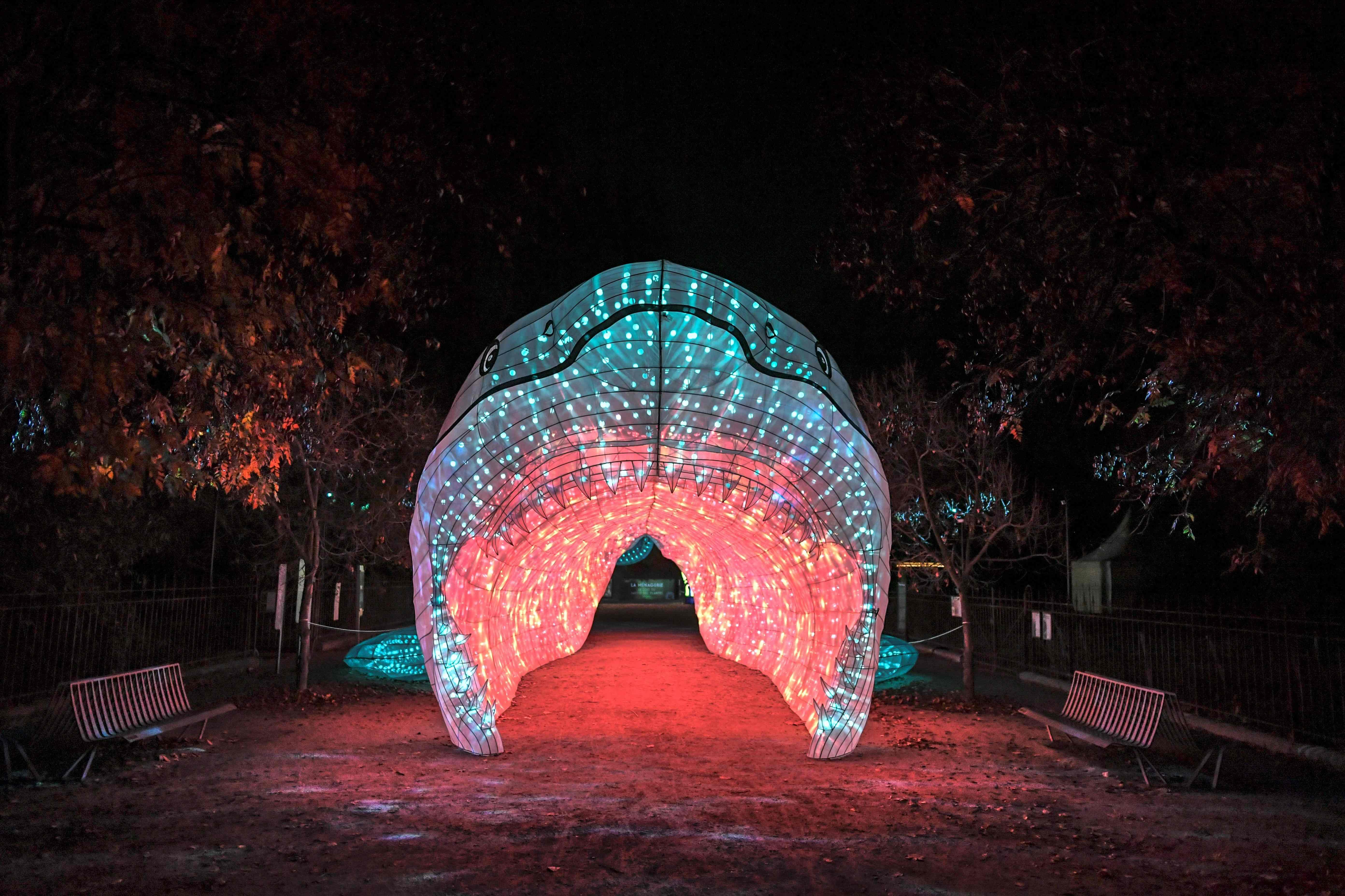 巴黎植物园举办动物主题灯光展