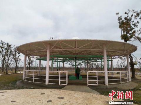 """江苏一动物园现""""旋转活马"""" 园方:创意来自马术训练"""