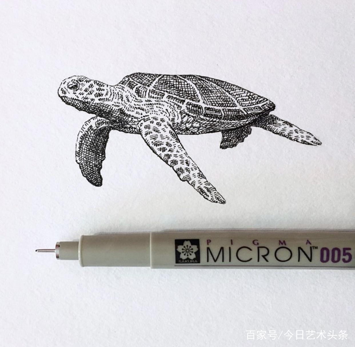 艺术家bryanschiavone针管笔动物绘画