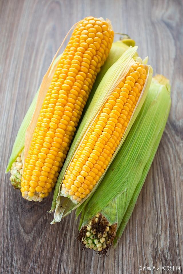 水煮玉米时,不要直接下锅煮,记住这个诀窍,玉米鲜嫩多汁