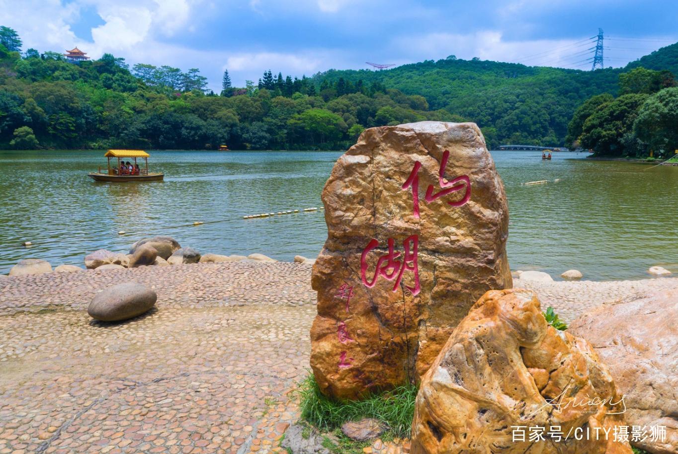 长知识了,深圳仙湖植物园这些花花草草,认识算你厉害