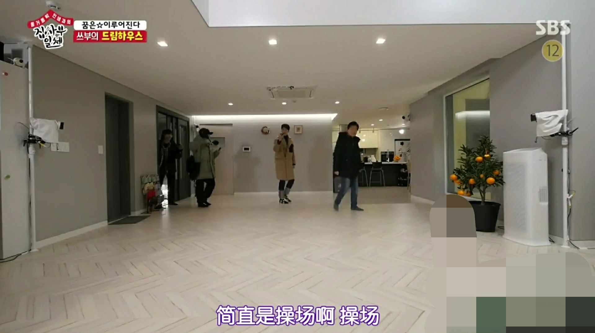 韩国明星李连福家很豪华,客厅如操场一样大,和女婿亲如朋友!