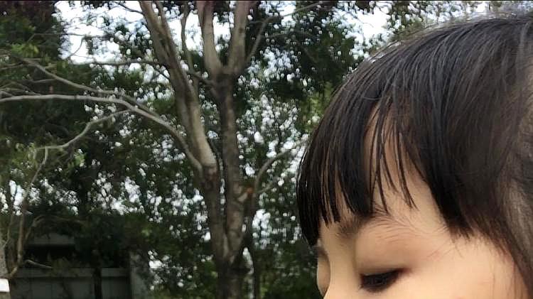 蝴蝶恋花vs 小姑娘爱上蒲公英