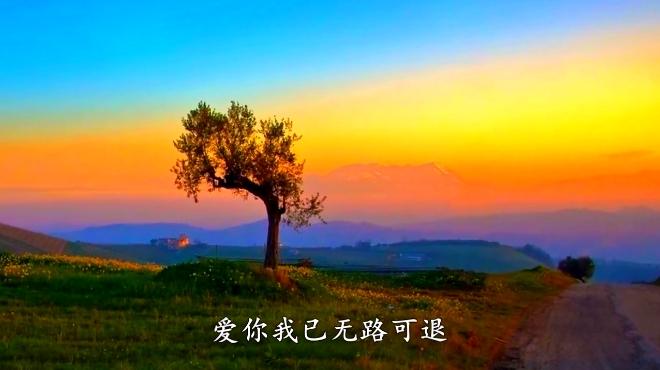 小沈阳《我的眼泪为谁飞》,好听极了!