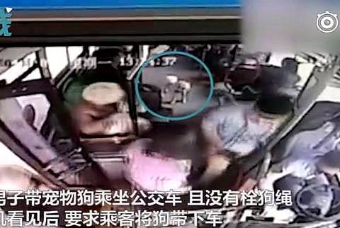 """""""车闹""""再现长沙公交,携带宠物狗上车遭拒,暴打司机致头颈脱位"""