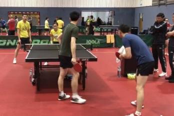 国乒奥地利训练首日!刘国梁紧盯樊振东,许昕、刘诗雯混双是重点