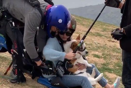 主人带着狗狗一起跳伞,狗狗在空中一脸懵逼,萌翻了