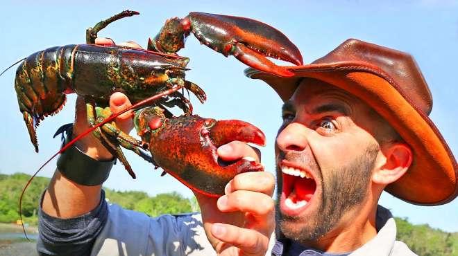 龙虾夹手是什么感觉,看表情就知道有多么痛了!