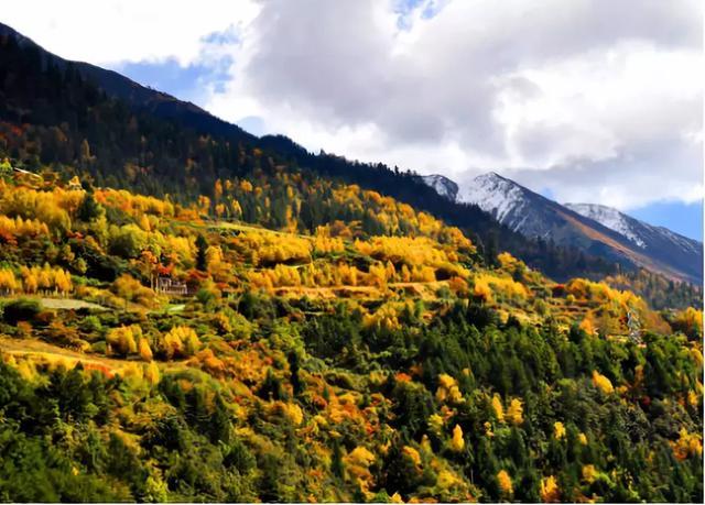 古爾溝神峰溫泉就在米亞羅風景區的腹地,這個溫泉小鎮擁有目前四川