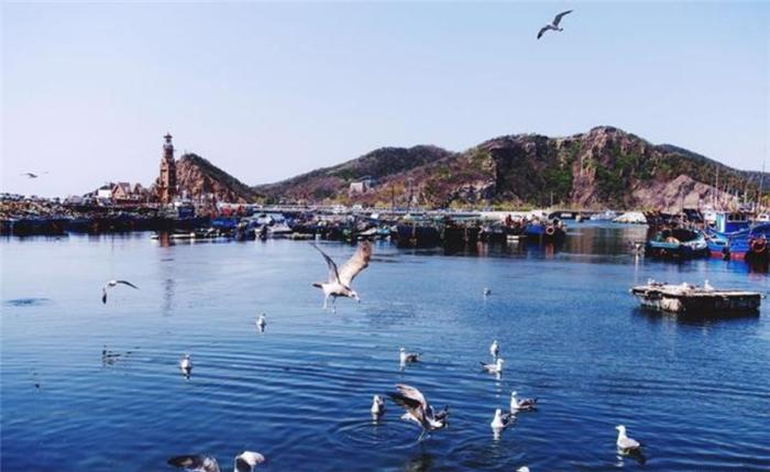 辽宁省内的几个最受欢迎的旅游景点,您都去过哪些呢?