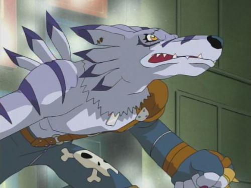 兽人加鲁鲁在与吸血魔兽战斗的时候非常勇敢,只不过不是对方的对手.