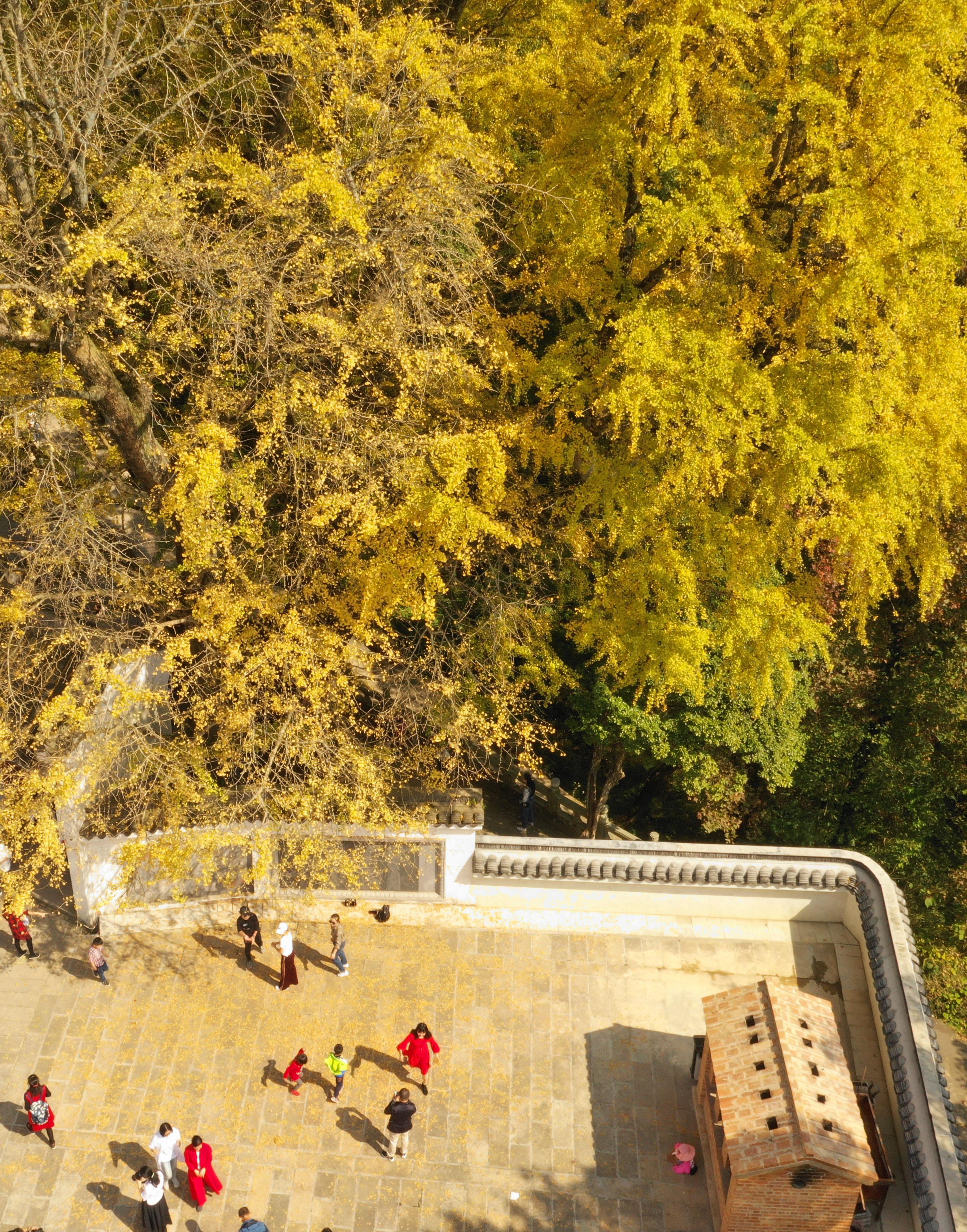11月3日,游客在湖南省衡阳市南岳衡山风景区游玩赏秋(无人机拍摄).