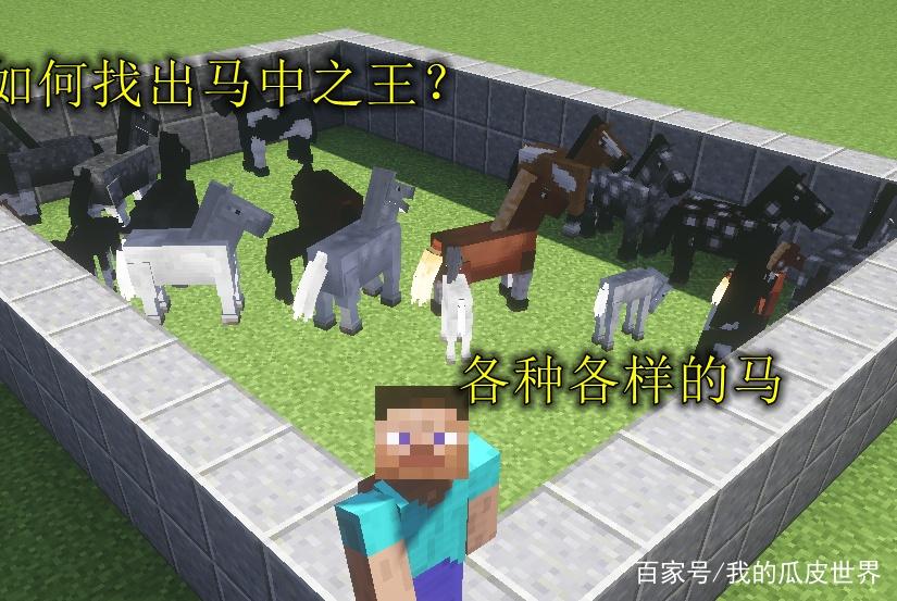 MC:为什么别人的马跑得很快?3分钟教你如何在MC中得到马中赤兔