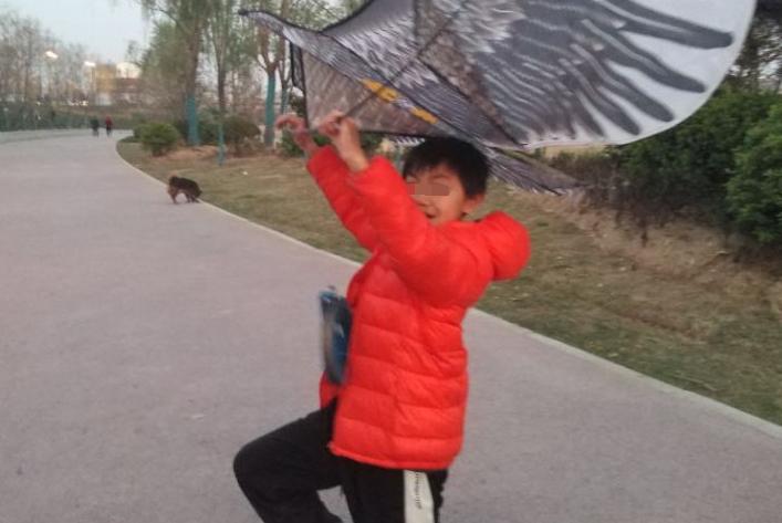 9岁孩子被迫在家寻找春天,35岁宝妈快乐春游,引发强烈共鸣