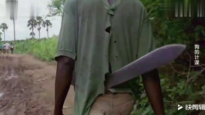 猴子祸害村里庄稼,村民带一群猎犬捕杀,猴子吓尿了