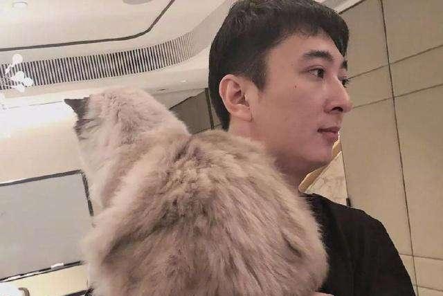 王思聪又养新宠物!继鸭子之后,这只超萌猫咪成了新宠
