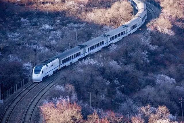 一朝看尽长安花:北京的春天有多美
