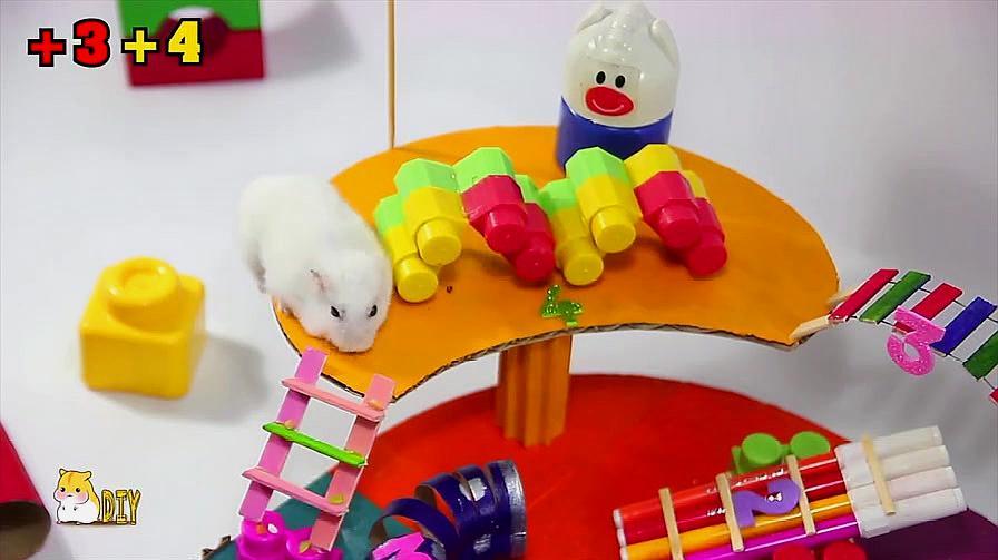 创意手工 如何给家里的仓鼠DIY有趣的比赛跑道?