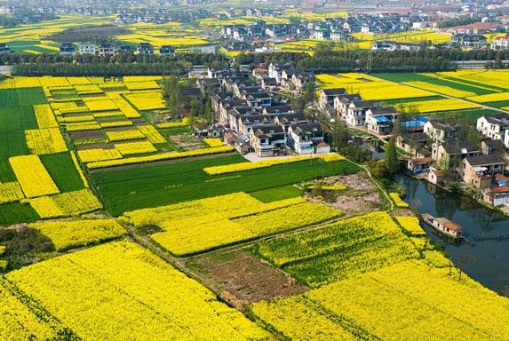 农村人在城里买了房以后,农村宅基地应该怎么处理?会被收回吗?