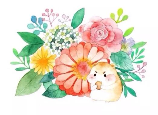 二次元萌物壁纸:萌萌哒的小动物们,你喜欢吗?